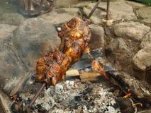 在一个室外壁炉烤的鸡 免版税库存照片