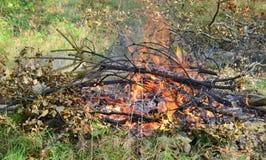 在一个室外壁炉的热的煤炭 免版税库存照片