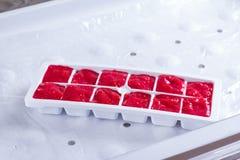 在一个容器的冻莓果立方体在冷冻机 库存照片