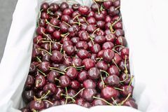 在一个容器的新鲜的成熟樱桃出售的在轰隆Lampu市场,曼谷,泰国上 免版税库存图片