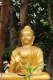 在一个寺庙的金黄菩萨雕象在乌隆他尼 免版税图库摄影