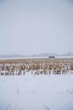 在一个小农场的雪原 免版税库存图片