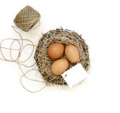 在一个小型超市篮子的小被绘的朱古力蛋在白色背景 库存照片