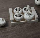 在一个小木箱的蘑菇 免版税图库摄影