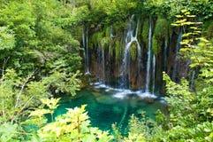 在一个小池塘附近的瀑布用鲜绿色水 免版税库存照片