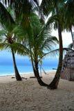 在一个小的海岛上 库存图片