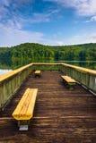 在一个小码头的长凳在湖Oolenoy,表岩石国家公园, 库存照片