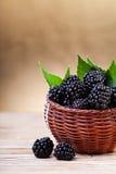 在一个小篮子的黑莓 免版税库存图片
