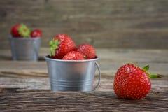 在一个小金属桶的野草莓 库存照片