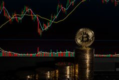 在一个屏幕前面的Bitcoins有烛台的绘制图图表 库存图片