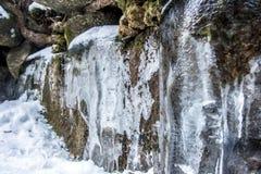 在一个岩石的冰柱在森林里, 免版税库存图片