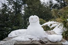 在一个岩石的雪人在山 库存照片