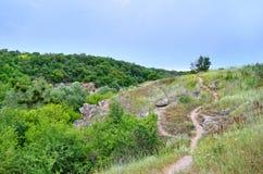 在一个峡谷的绿色树反对多云天空背景 免版税库存照片