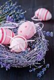 在一个嵌套的复活节彩蛋用淡紫色开花 库存图片