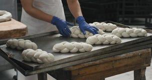 在一个工作大面包店的面包师准备面团准备好是在手套特写镜头细节的煮熟的工作,他们 影视素材