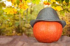 在一个帽子的南瓜在大袋 免版税库存照片