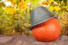 在一个帽子的南瓜在大袋 库存照片
