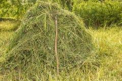 在一个干草堆的老叉子绿色灌木背景的  免版税库存图片