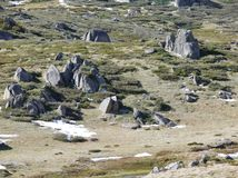 在一个平原的岩石在斯诺伊山 免版税库存照片