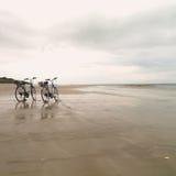 在一个平的海滩的2辆自行车在Il de Re South西部法国 免版税库存照片