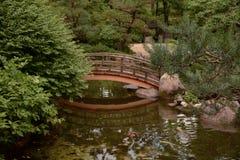 在一个平静的设置的一座桥梁 免版税库存照片