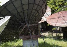在一个庭院里放弃的大卫星盘在菲律宾 库存图片