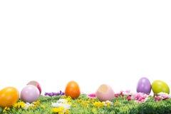 在一个开花的草甸的美丽的复活节彩蛋 免版税库存照片