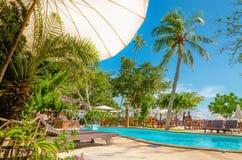 在一个异乎寻常的海滩旁边的豪华游泳池 免版税库存照片