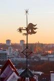 在一个房子的屋顶的翻板在塔林,爱沙尼亚 免版税库存照片