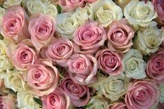 在一个新娘安排的桃红色和白玫瑰 图库摄影