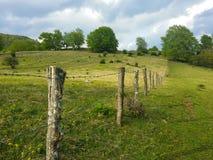 在一个新绿草领域的Barbwire篱芭 免版税库存图片
