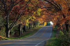 在一个晴朗的秋天下午的乡下公路 库存照片