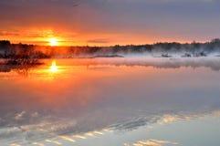 在一个有薄雾的狂放的池塘的日出 免版税库存照片