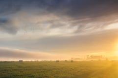 在一个有薄雾的草甸的日出有秸杆块的 免版税库存照片
