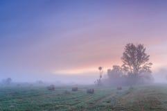 在一个有薄雾的草甸的黎明有秸杆块的 免版税库存图片