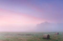 在一个有薄雾的草甸的黎明有秸杆块的 免版税库存照片
