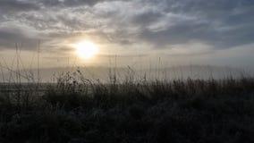 在一个有雾的风景的日出 免版税图库摄影
