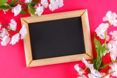 在一个木制框架的黑板与在桃红色背景的白花围拢的一个空的箱子 复制空间 的模板 库存图片