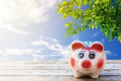 在一个木地板上的桃红色存钱罐位置与新鲜的叶子和花花公子 库存照片