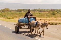 在一个木推车的送货人饮用水由驴拉扯了我 库存照片