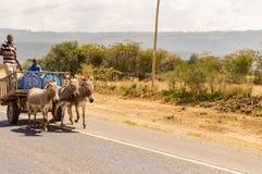 在一个木推车的送货人饮用水由驴拉扯了我 免版税库存照片