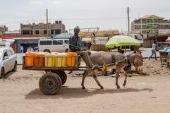 在一个木推车的送货人饮用水由驴拉扯了我 免版税图库摄影