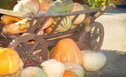 在一个木推车附近的许多五颜六色的南瓜 免版税库存照片