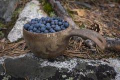 在一个木杯子的蓝莓 库存照片