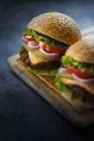 在一个木板条的两个开胃汉堡 免版税库存图片