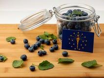 在一个木板条的印第安纳旗子用在丝毫的蓝莓 免版税库存图片