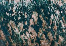 在一个木板条的老绿色油漆纹理 图库摄影