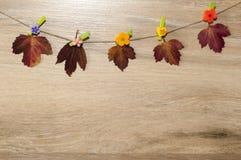 在一个木板的五颜六色的秋叶 免版税库存图片