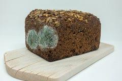在一个木板的发霉的黑麦面包谎言 免版税图库摄影