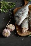 在一个木板的新鲜的未加工的dorada鱼有迷迭香和大蒜小树枝的在一张黑桌上 库存图片